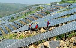 'Solar growth to shift to inland China again as support phased out'