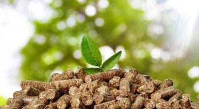 Biomass-based Energy firm Punjab Renewable Energy Systems gets Rs 55 Cr from Shell