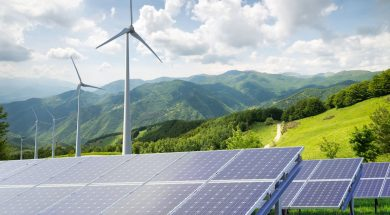 Brazil's pigs help people produce clean energy