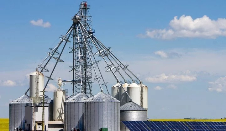Canada's Solar Breakthrough? 600MW Merchant Project Gets Green Light in Alberta