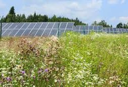 Canadian Investment Manager Jumps into U.S. Community Solar Market with Nautilus Acquisition