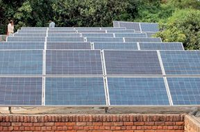 Gujarat Developers shying away from solar auctions