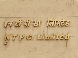 No bidders for NTPC's tender for 1,200 MW solar projects