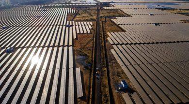 Rajasthan CM invites Japanese investment for solar enrergy