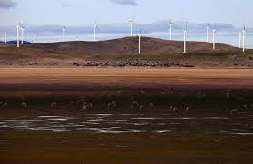 Australia set to beat 2020 clean energy target