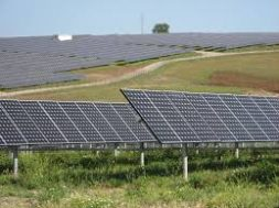 Feasibility study of installation of MW level grid connected solar photovoltaic power plant for northeastern region of India