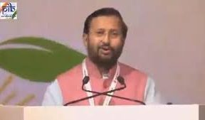 India halfway through its 175 GW renewable energy goal- Javadekar