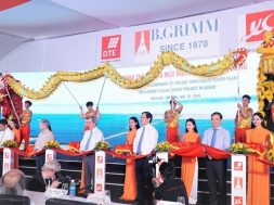 Largest solar power project in Southeast Asia launched in Tay Ninh