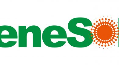 Shah Capital Invests US$11 Million in ReneSola