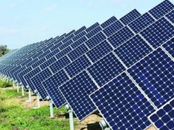 Steep import tariff won't push domestic solar manufacture