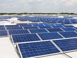 807 kw solar power