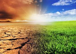 Studies on Impact of Climate Change