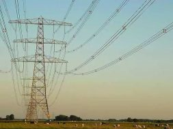 Tamil Nadu Announces Tender for Supply of Servers, Hardware and AMR Network accessories for Renewables