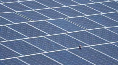 Vietnam is leading Asean growing solar PV market