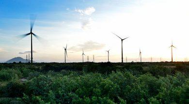 Leading clean energy enterprises in 2019 announced
