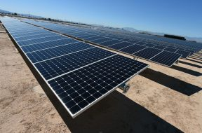 NTPC to buy modules separately for solar projects