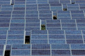 New $100 million SPV unveiled for renewable projects