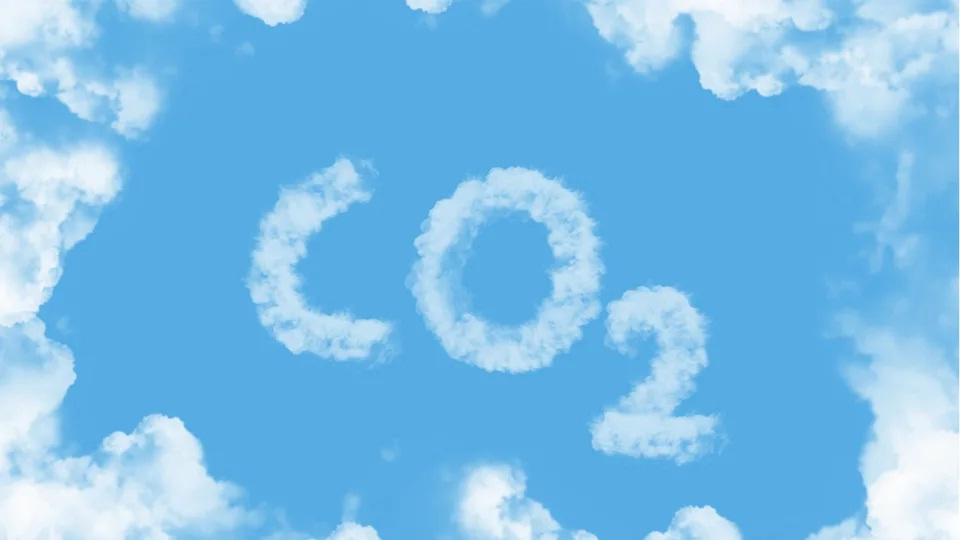Scientists Have Developed A Bacteria That Can Eat Carbon Dioxide
