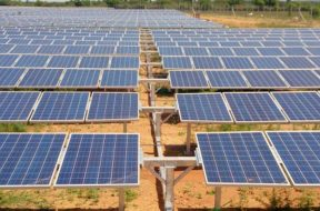 Tamil Nadu's solar policy benefitted 2.86 lakh houses- TEDA chief