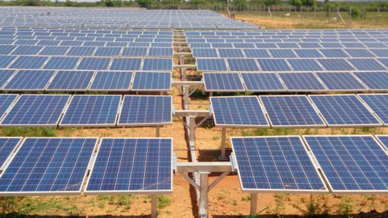 Tamil Nadu's solar policy benefitted 2.86 lakh houses: TEDA chief