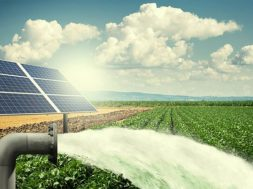 Vikram Solar Modules Used for Installing 300 Solar Water Pump Projects Across West Bengal and Odisha