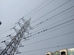 Government proposes grant of Rs 1.1 lakh crore for state discoms