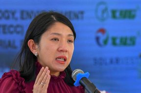 Govt aims to increase net energy metering output to 300MW- Yeo