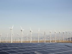 In the matter of issuance of the Renewable Energy Certificates to the Petitioners for the specified period