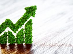 Two big ideas towards green growth-The only viable path to development left to us