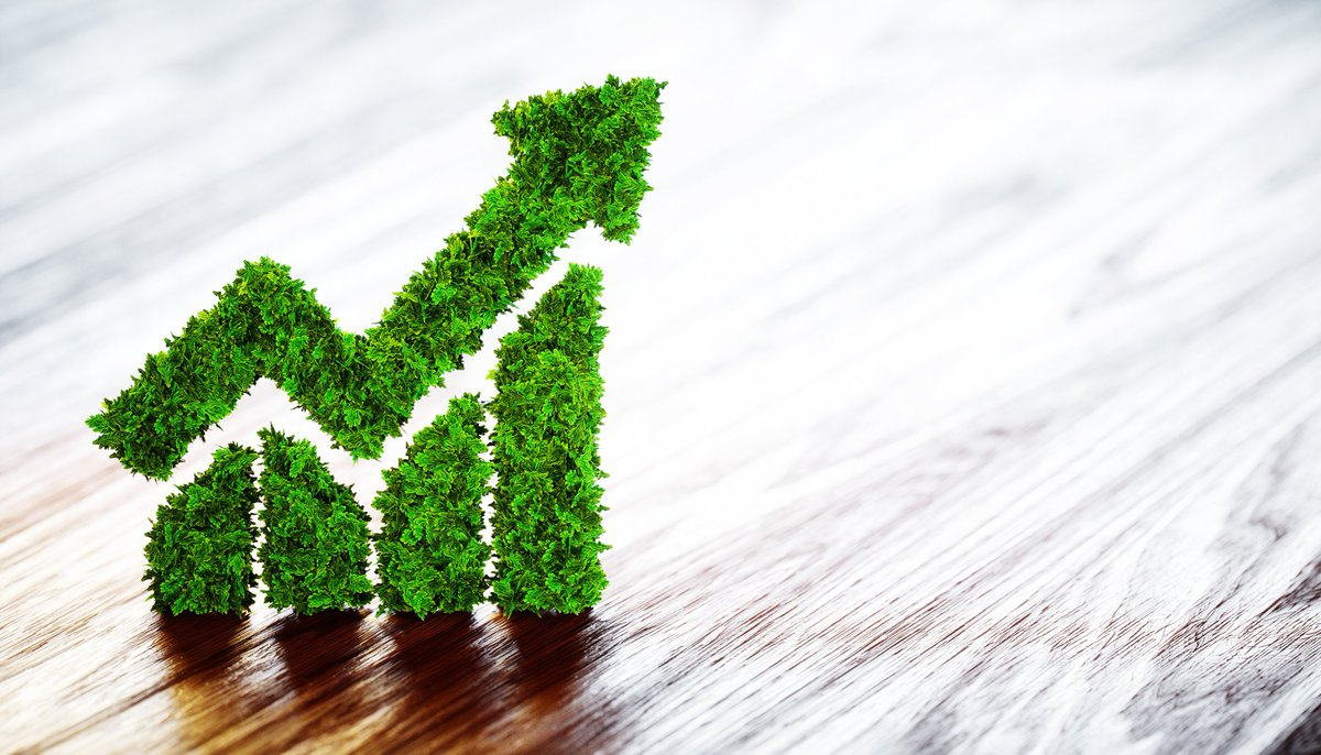 Two big ideas towards green growth: The only viable path to development left to us