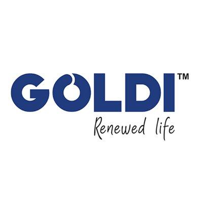 Goldi Solar Mulls Manufacturing Capacity Expansion to 2.5 GW