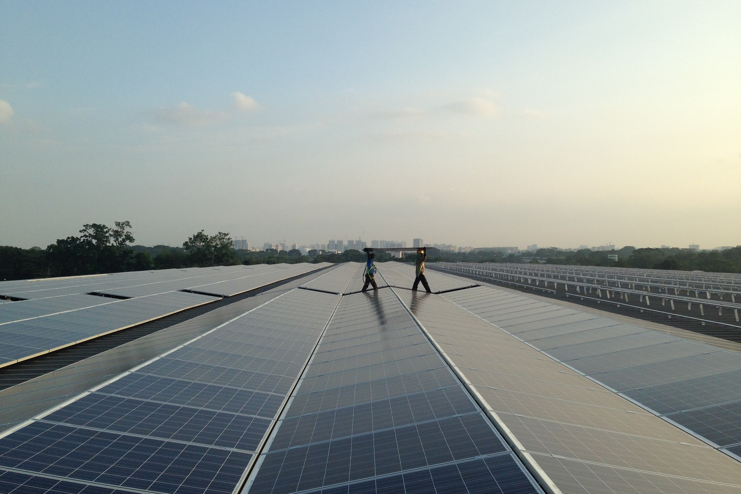 Fear? Cost? Fame? What's turning on Asian businesses to renewable energy?