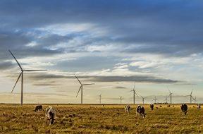 Acciona To Build 1,026 MW Wind Farm In Queensland