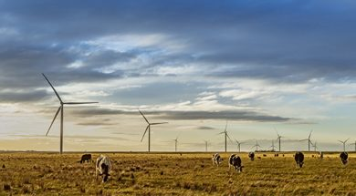 Acciona To Build 1,026 MW Wind Farm In Queensland