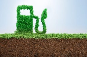 Promotion of Green Fuel
