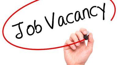 Solar Job-Manager- Sales