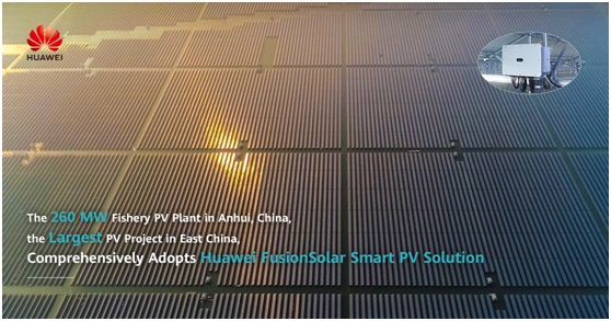 Fishery PV Plant: Largest Grid-Parity PV Project in East China