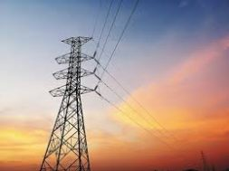 Delhi's Peak Power Demand Reduces By Up To 49% During Lockdown