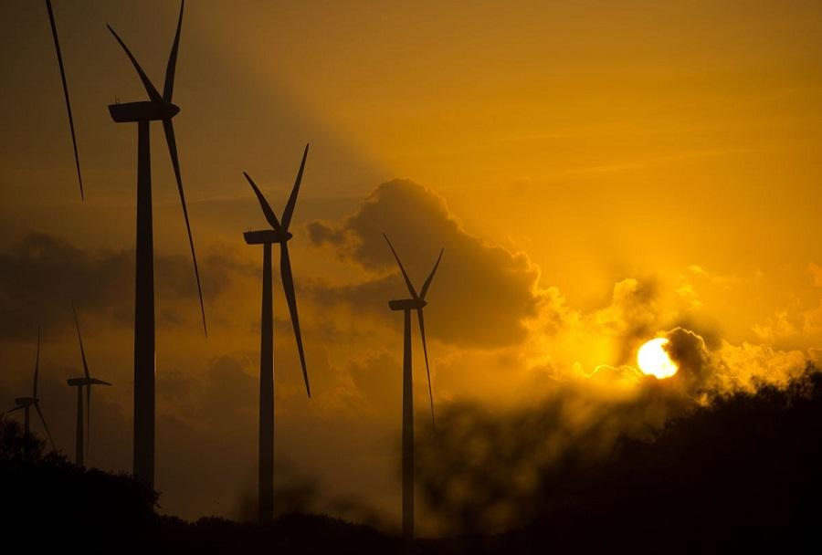 Oil Slump May No Longer Be a Curse for Renewable Energy