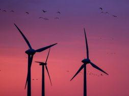 Renewable Energy Way Up During COVID19 Shutdowns