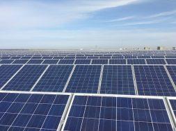 SoftBank-Backed SB Energy & EDEN Bag 900 Megawatts Of Solar In India