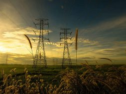 World's largest lockdown and its consequences for the electricity sector
