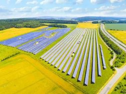 ACME Solar cancels deal to supply power at record low tariff citing COVID uncertainty