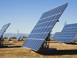 COVID-19 provides opportunities for domestic solar module manufacturing