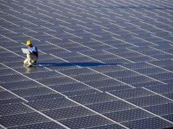 Maharashtra-Raut wants 500MW solar park in Vidarbha