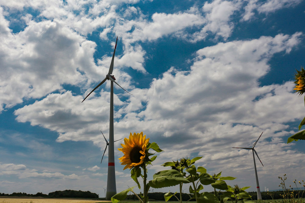 Mexican court provisionally suspends renewable energy plant freeze order