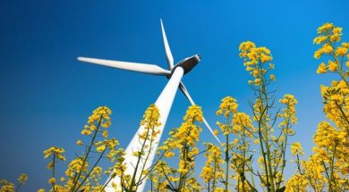 Researchers released global map of renewable energy sites