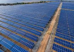 SECI Issues Tender For Setting Up of 10 MW Solar PV Power Projects At Rajasthan
