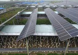 DGTR calls meeting over solar cells safeguard duty case on Friday
