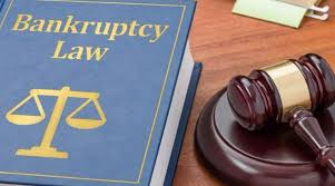 INSOLVENCY AND BANKRUPTCY CODE (AMENDMENT) ORDINANCE, 2020 (5 June 2020)